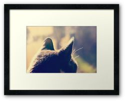 Day 202 - 28th January 2012 - Framed Print