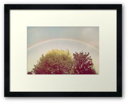 Day 309 - 14th May 2012 - Framed Print