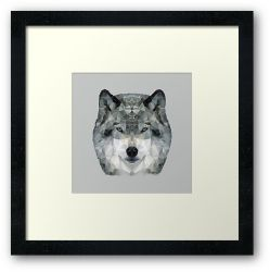 The Wolf - Framed Print
