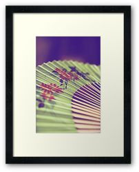 Day 50 - 29th August 2011 - Framed Print