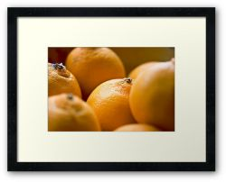 Day 75 - 23rd September 2011 - Framed Print
