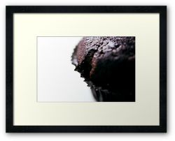 Day 139 - 26th November 2011 - Framed Print
