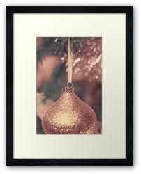 Day 162 - 19th December 2011 - Framed Print