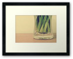 Day 232 - 27th February 2012 - Framed Print
