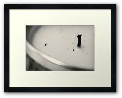 Day 268 - 3rd April 2012 - Framed Print