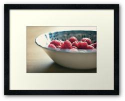 Day 292 - 27th April 2012 - Framed Print