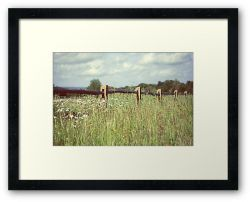 Day 335 - 9th June 2012 - Framed Print