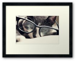 Peeking - Framed Print