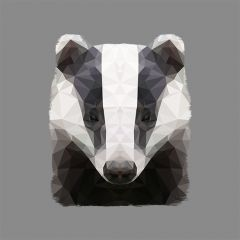 The Badger - Print