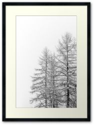 Meribel I - Framed Print
