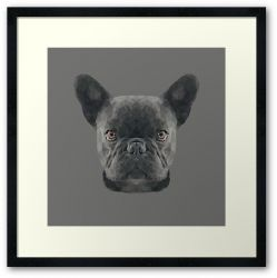 The French Bulldog - Framed Print