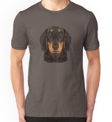 The Miniature Dachshund