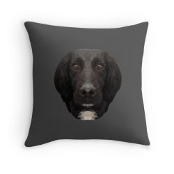 The Springer Spaniel - Cushion