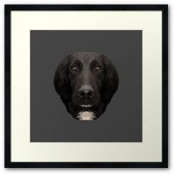 The Springer Spaniel - Framed Print