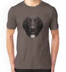 The Springer Spaniel - T-Shirt/Clothing