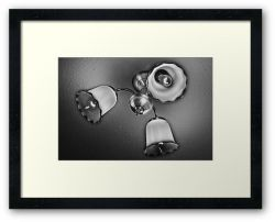 Day 13 - 23rd July 2011 - Framed Print